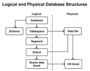 oracle database logical strucrure